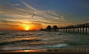 Sunset at Naples pier with waves, seagull along beach
